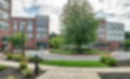 Community garden_2101_Ellsworth_Blvd_Mal