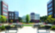 Ellsworth Prime Website.jpg