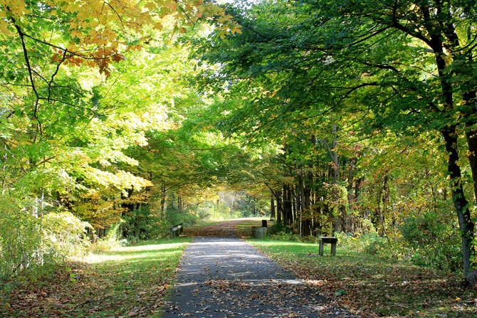 ExecuStay New York Celebrates Fall – The State's Most Beautiful Time of Year for Corporate Travel