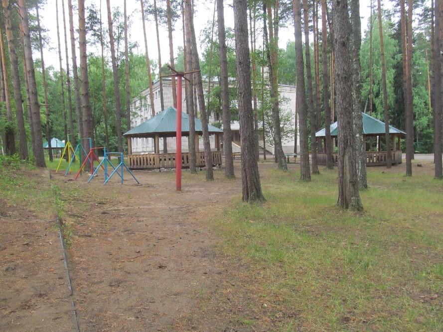 Детский  лагерь «Лесной городок»