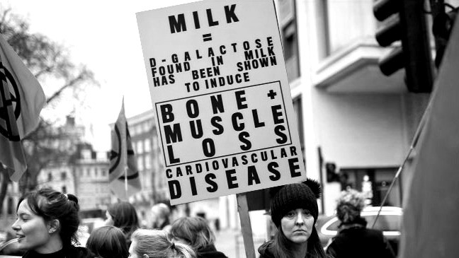 Placard in protest environment 2
