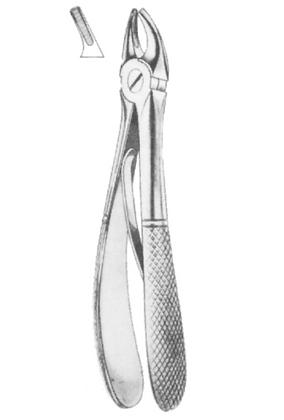 SRD100/111-         Premolari superiori