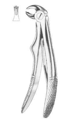 SDR100/160 -Molari e Premolari inf.