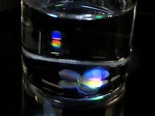 spectral_splitting_LMs.jpg