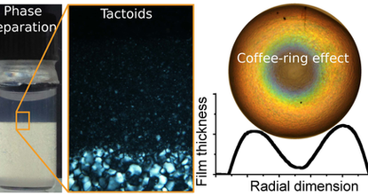 Cellulose nanocrystals: physics, physical chemistry & applications