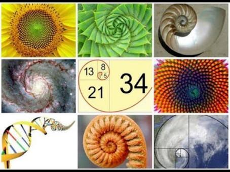 הדפסת תלת מימד בשיעורי מתמטיקה, אמנות ומדעים - סדרת פיבונצ׳י