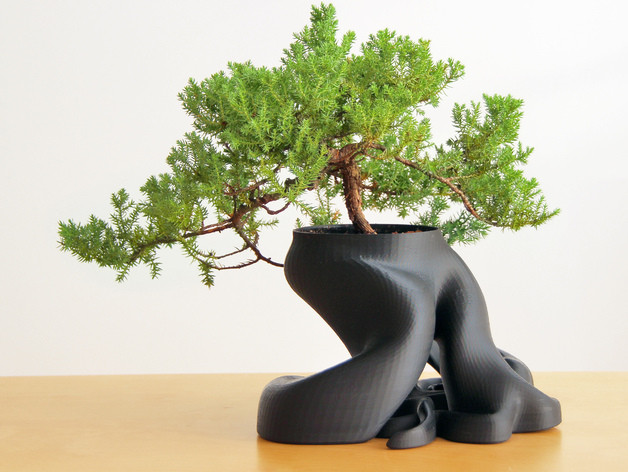 Great Bonsai vase