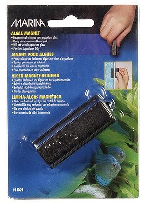 Marina Algae Magnet - Small
