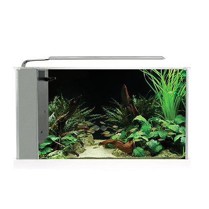 Fluval Spec V 5 Gallon Aquarium Kit