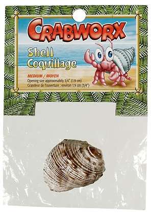 Crabworx Shell, medium, 1 piece