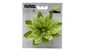 Fluval Chi lily flower