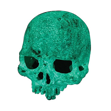 Exo Terra Glow-In-The-Dark Hide Out - Glow Skull