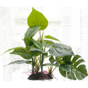 Fluval Anubias Plant 8in