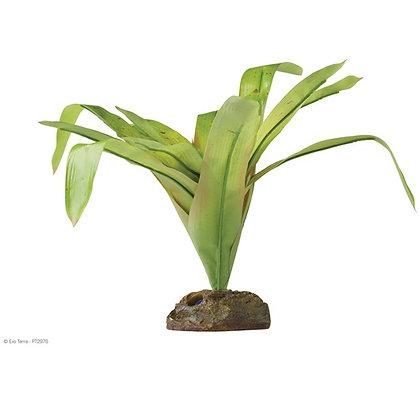 Exo Terra Vriesea Gigentea Medium