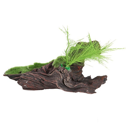 Fluval Black Root with Moss