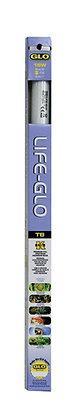 Life-GLO T8 Fluorescent Aquarium Bulb - 15 W