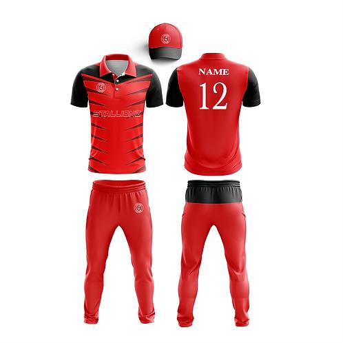 cricket kit-17