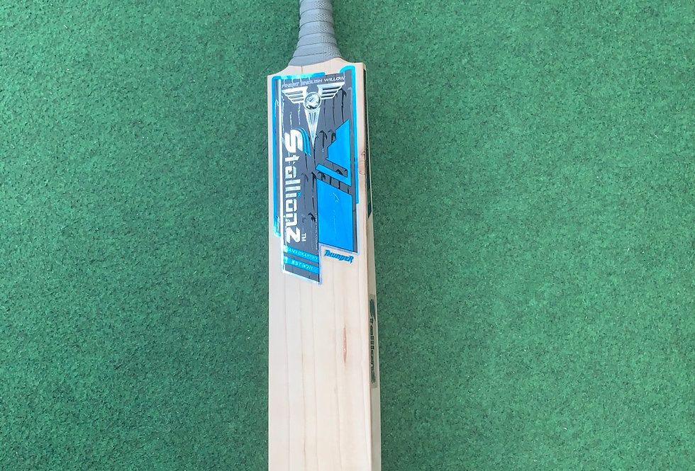 Thunder Cricket bat