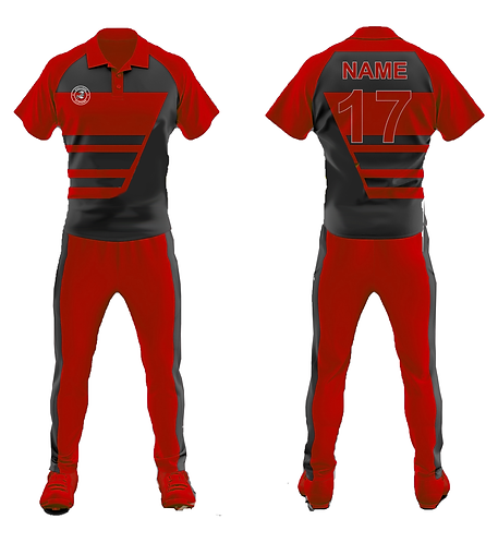 cricket kit-24