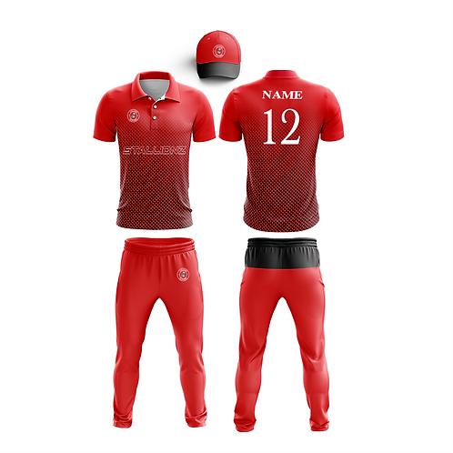 cricket kit-31