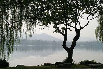 china-1013614_1920.jpeg