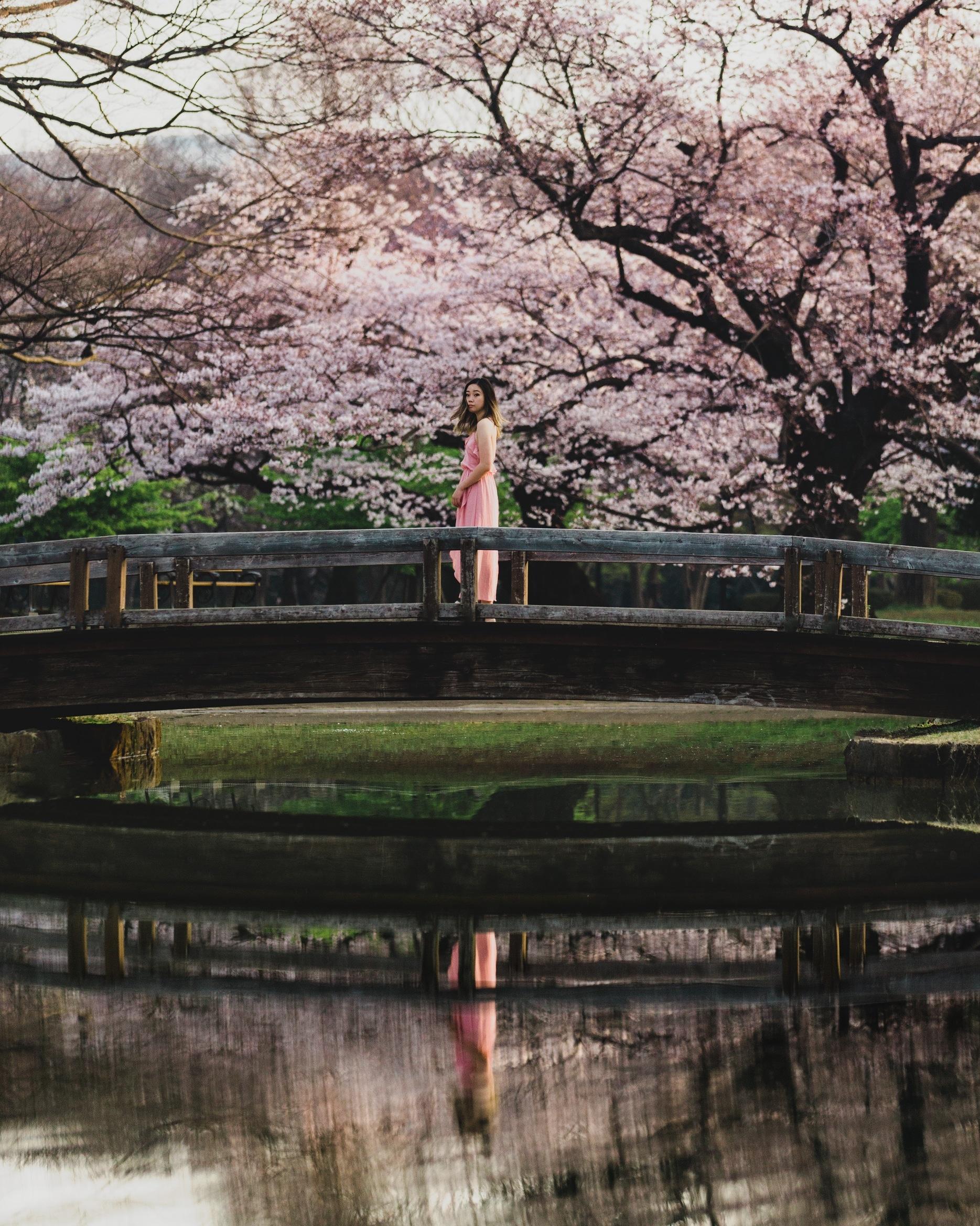 Tokyo_5amWakeupCall