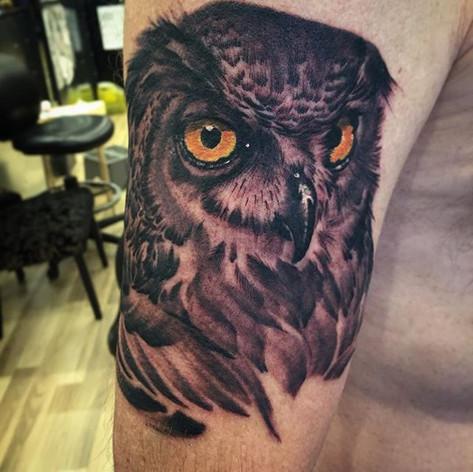 Black and Grey Owl Portrait Tattoo