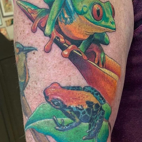 Colour Realism Frog Tattoo