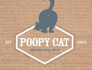 Een recycleerbaar toilet voor jouw kat met Poopycat