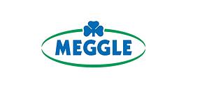 MEGLE LOGO.png