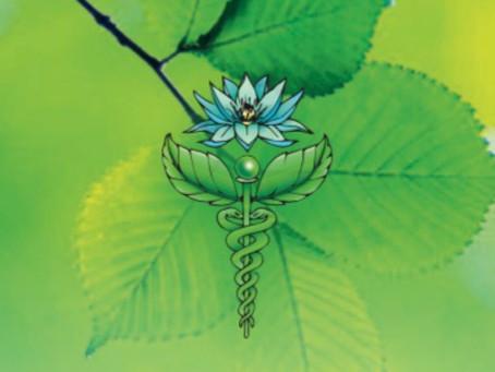 Mijn logo het symbool Caduceus en een blauwe lotus.