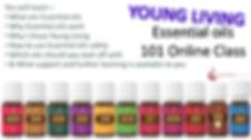 intro online class thumbnail.jpg