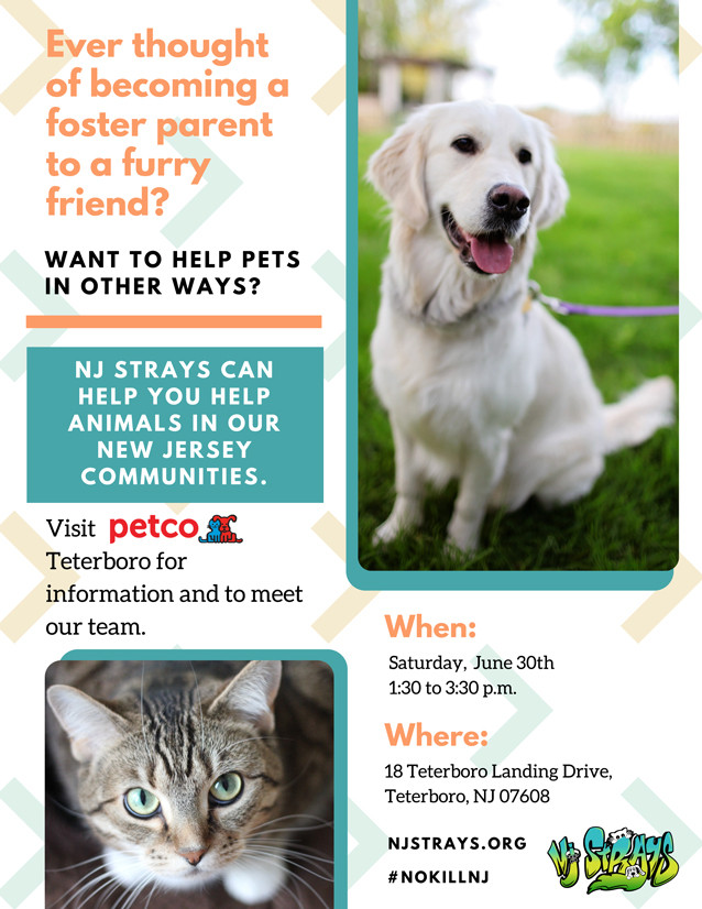 Visit Petco in Teterboro, New Jersey on June 30 to become a pet fosterer.