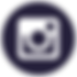 instagram icon_for web-01.png