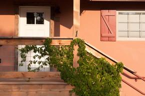 CAH_2360 #1 railing and Virg. creeper.jp