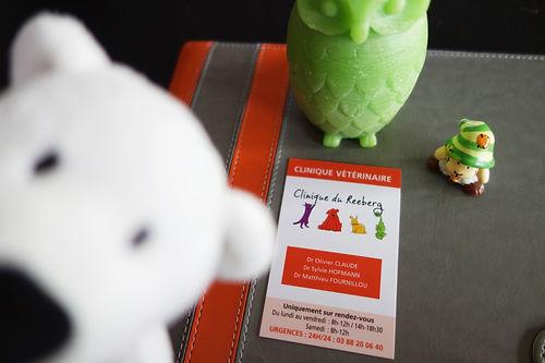 Impulsion graphique, conception graphique graphiste freelance Alsace carte de visite print flyer brochure plaquette commerciale logo