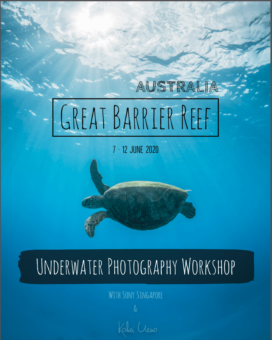 Great Barrier Reef Photography Tour
