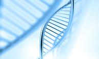 DNA Spiral.PNG