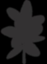 La teste, micronutrition-naturopathie-alimentation-stress-troubles-digestifs-naturopathe-naturopathie-Gironde-bassin-Arcachon-bordeaux-La-teste-Gujan-mestras-Cazaux-Biscarosse-Salles-Biganos-Arès-Le-Teich