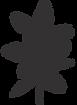 digestion nutrithérapie sophie croiger boulogne billancourt