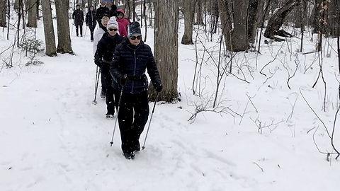 Marche nordique d'hiver