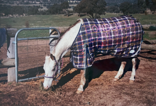 The new rug she got after hers was stolen at Macarthur