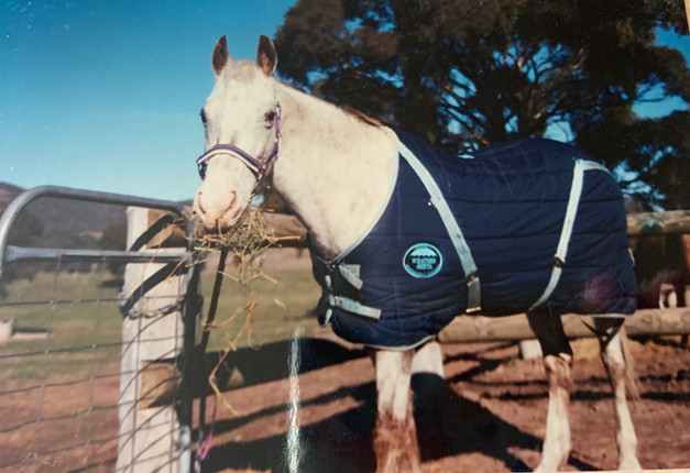 The first doona rug I bought her, at Macarthur