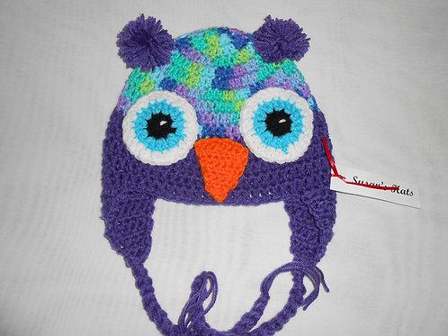 Owl Aqua Eyes