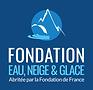 logo carré 2020 fondation ENG.png