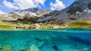Les lacs urbains et de montagne, pollués ou non ?