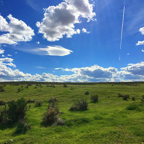 003-472-03 / 20.32 Acres in Eureka County, Nevada
