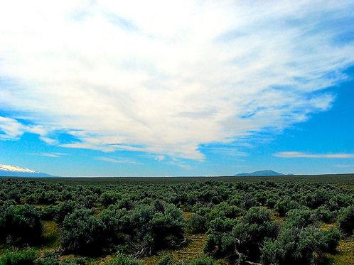 019-007-010 / 1.13 Acres in Elko County, Nevada