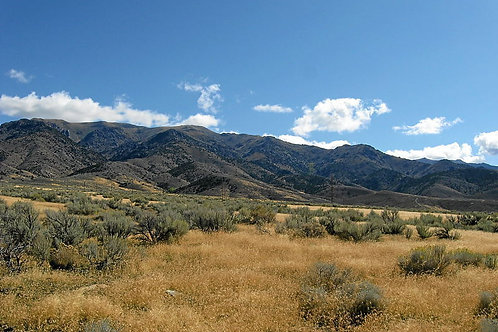 010-376-12 / 2.50 Acres in Pershing County, Nevada