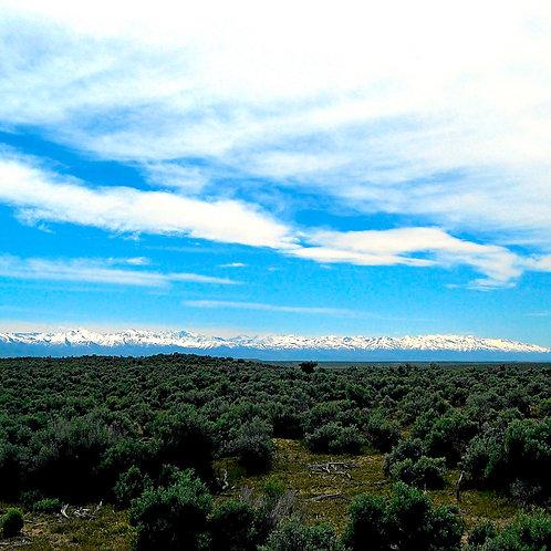 020-006-008 / 1.03 Acres in Elko County, Nevada